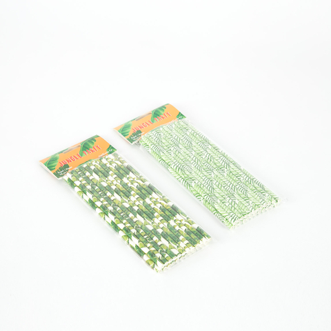 SET OF 24 PAPER STRAWS