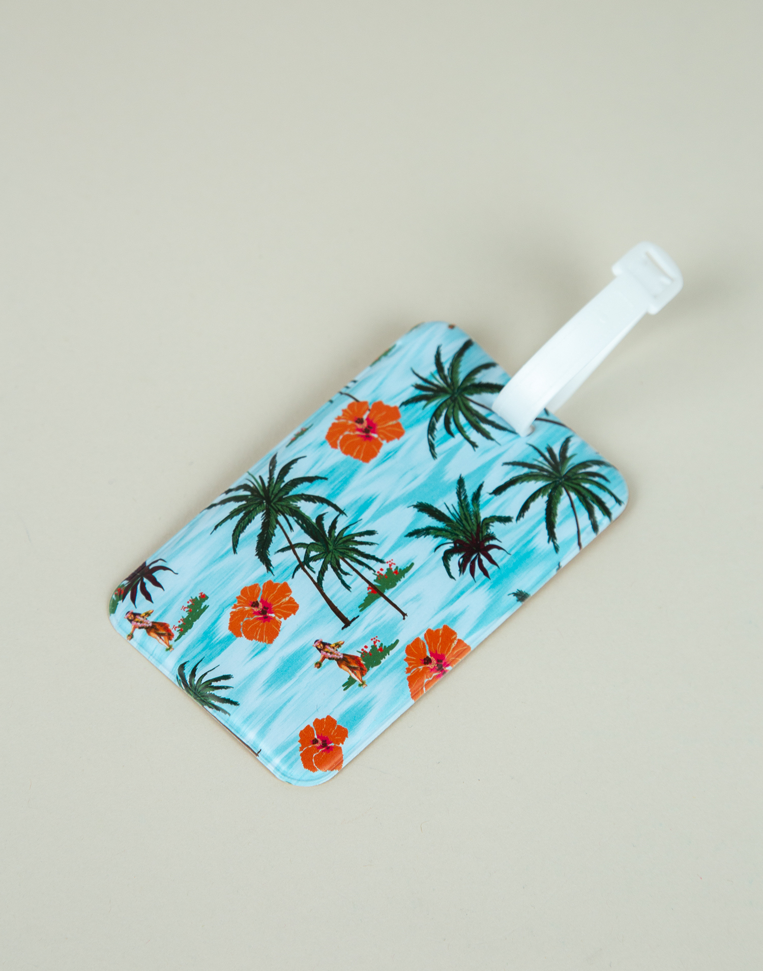 Suitcase tag